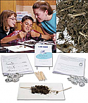 Basic Owl Pellet Study Kit