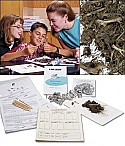 Advanced Owl Pellet Study Kit