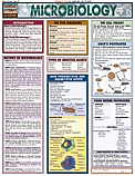Microbiology Chart