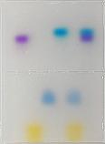 Electrophoresis: Agarose Gel Separation of Dyes