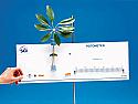 Potometer / Transpirometer