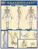 Anatomy Test Chart