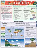 Ecology Ecosystems Chart