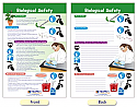 Biological Safety Bulletin Board Chart