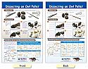 Dissecting an Owl Pellet Bulletin Board Chart