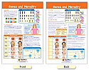 Genes & Heredity Bulletin Board Chart