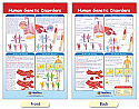 Human Genetic Disorders Bulletin Board Chart