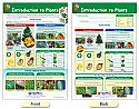 Introduction to Plants Bulletin Board Chart
