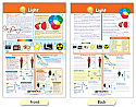 Light Bulletin Board Chart