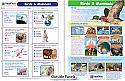 Mammals & Birds Visual Learning Guide