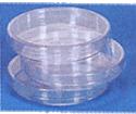 Petri Dish Plastic 100 mm dia pk of 5