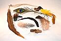 Feathers Microscopy Kit