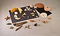 Marine Microscopy Kit