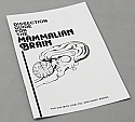 Dissection Guide for the Mammalian Brain
