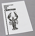 Dissection Guide for the Crayfish