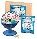 Animal Cell Model Plus