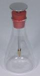 Electroscope Flask Form