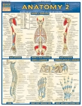 Anatomy 2 Advanced Chart