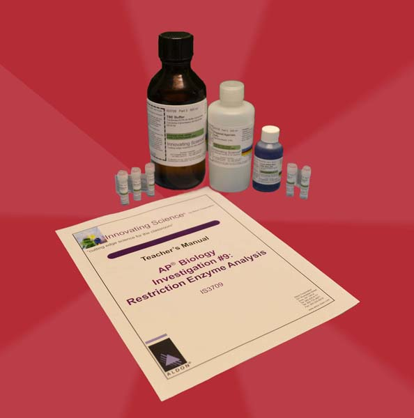 restriction enzymes ap biology essays