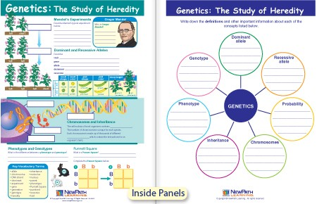 W94 4643 Genetics The Study Of Heredity Visual Learning